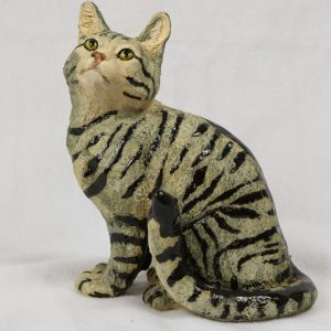 Tabby Cat 4